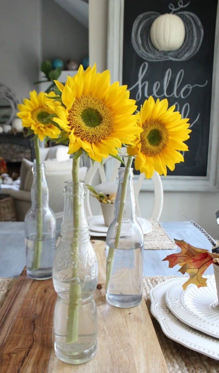 Sunflowers in a been bottle vase.