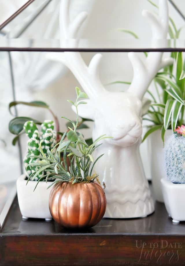 A white reindeer head next to a plant and a copper pumpkin with an air plant in it.