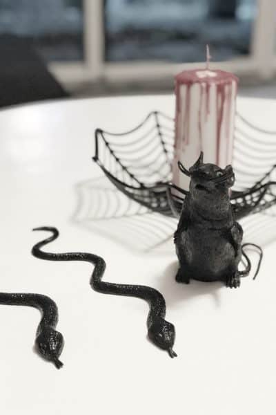 The black Mouse with two black snakes and the spider web basket in the background with the bloody candle.