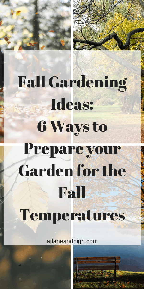 It's time for Fall Garden Preparation. For fall garden ideas and 6 ways to get your garden ready for fall you don't need to go further! #atlaneandhigh #fallgarden #gardenideas