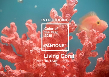 Pantone paint color of the year, living coral.