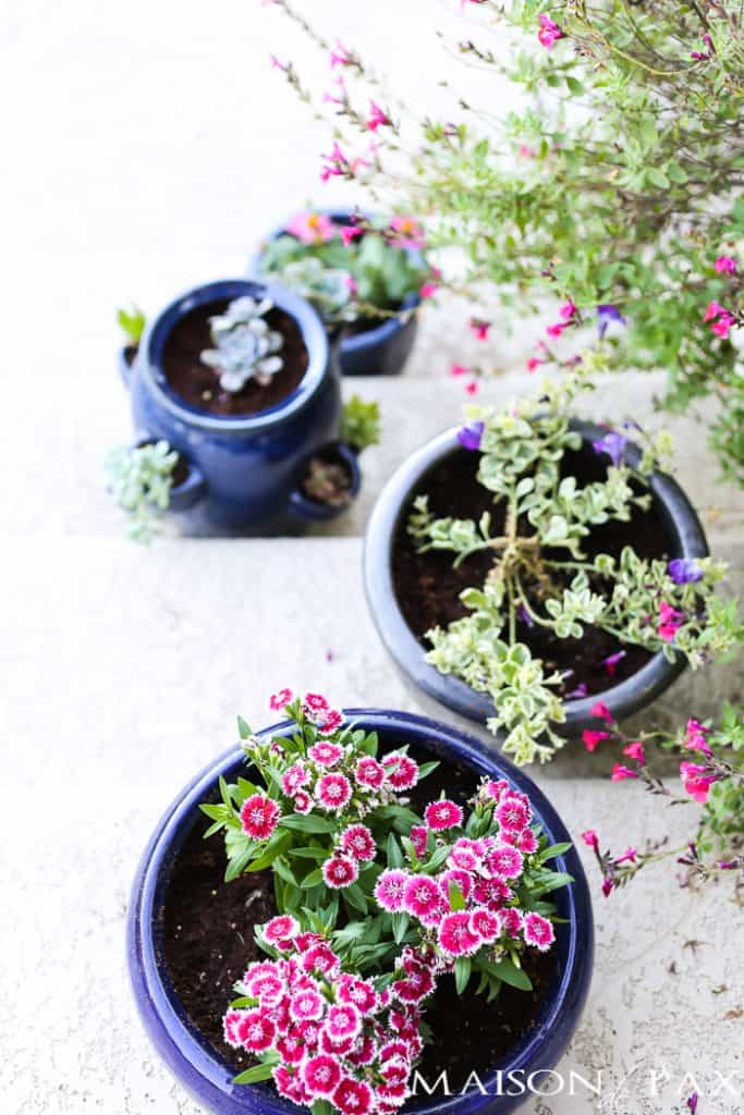 Blue pots of different sizes with plants in them sitting on stairs.