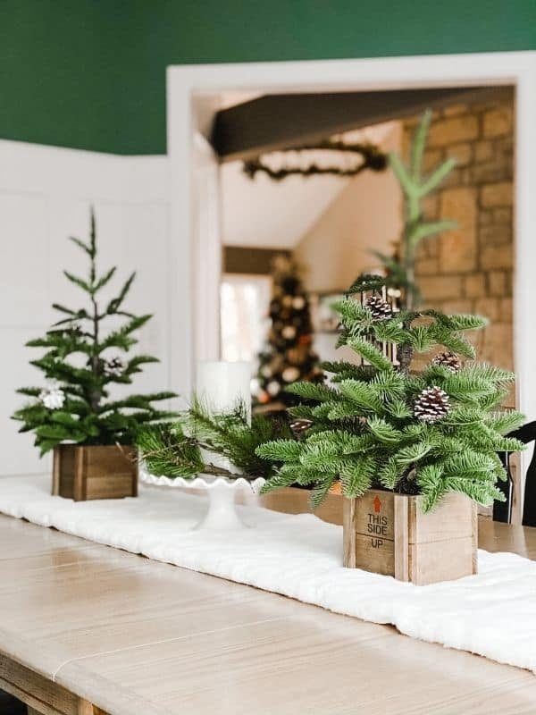 Christmas trees in wooden boxes on a snow white table runner on my dining room table.