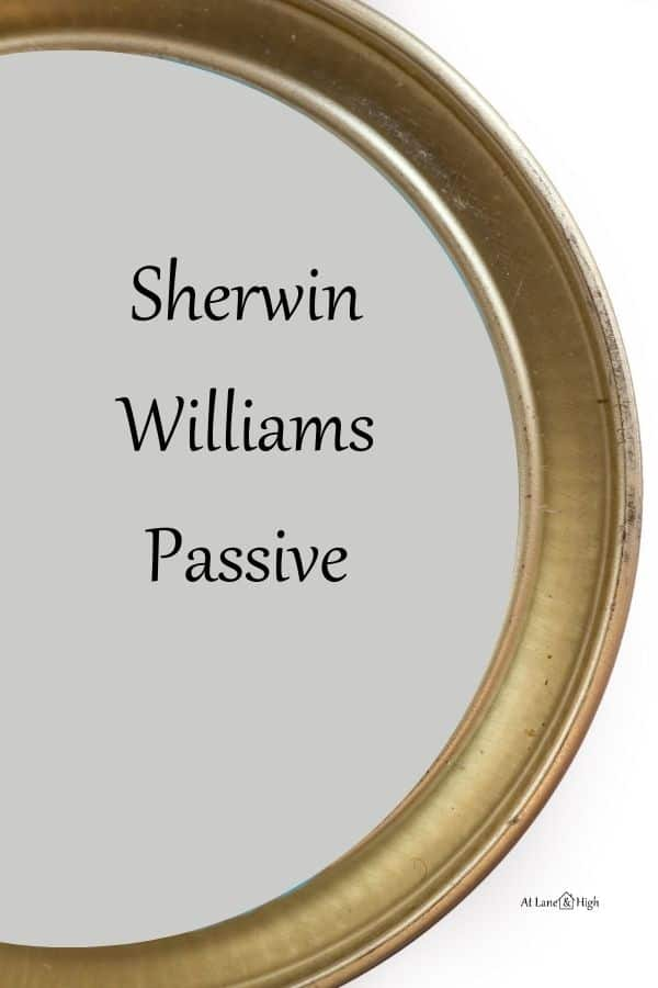 Sherwin Williams Passive pin for Pinterest.