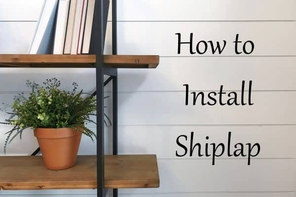 Shiplap walls behind a book case with wood shelves and a plant.