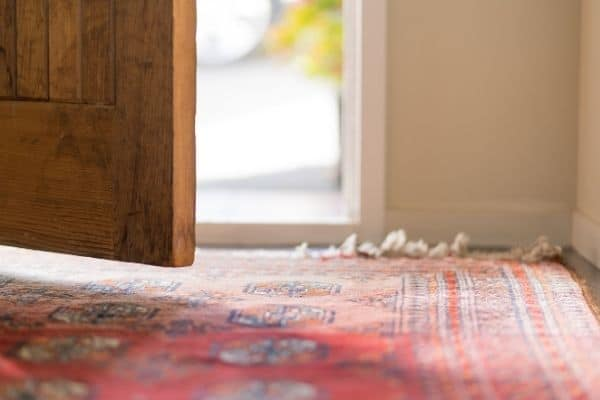 A red patterned rug at the front door and the door is ajar.