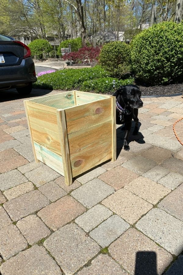 The shell of the planter box is finished and sitting on my driveway with my black dog sitting next to it.