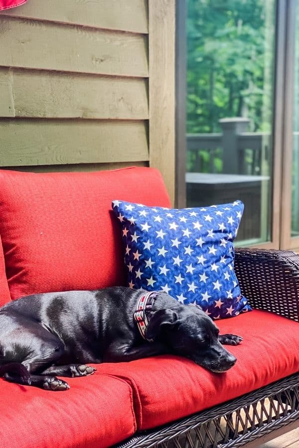 The pillow on my outdoor couch with my dog sitting right next to it.