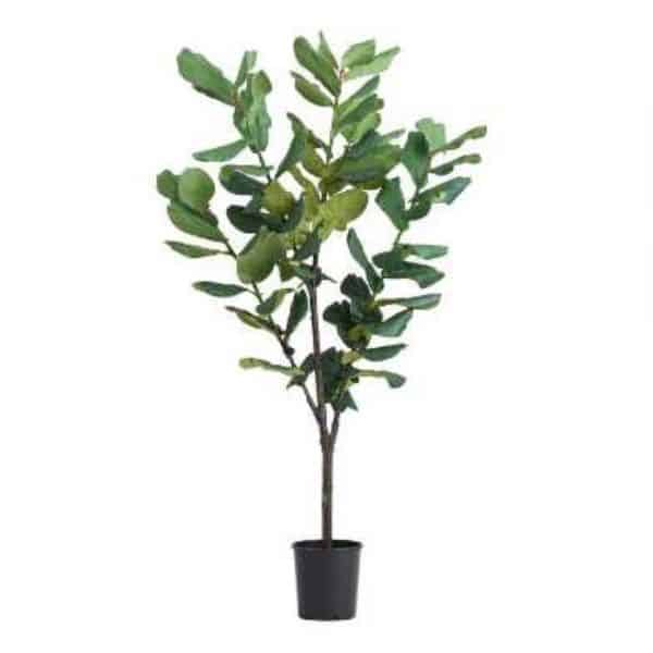 A faux fiddle leaf fig tree with a white background.